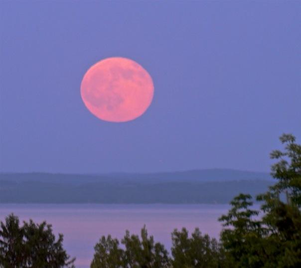 full moon rising - June 20, 2016, Northport, MI